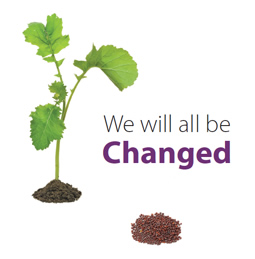 we will all be changed