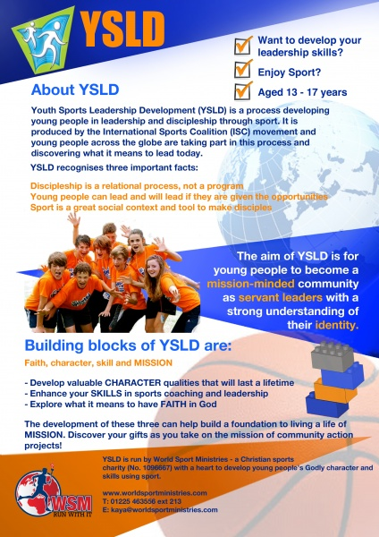 YSLD-p1